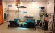 Operační sál pro koně